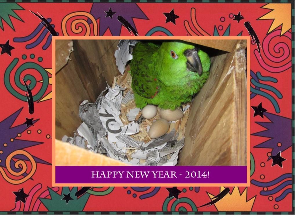 happy new year burt