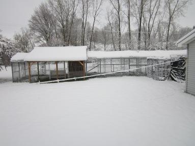 5-9-2020 Definitely Winter's Last Stand!